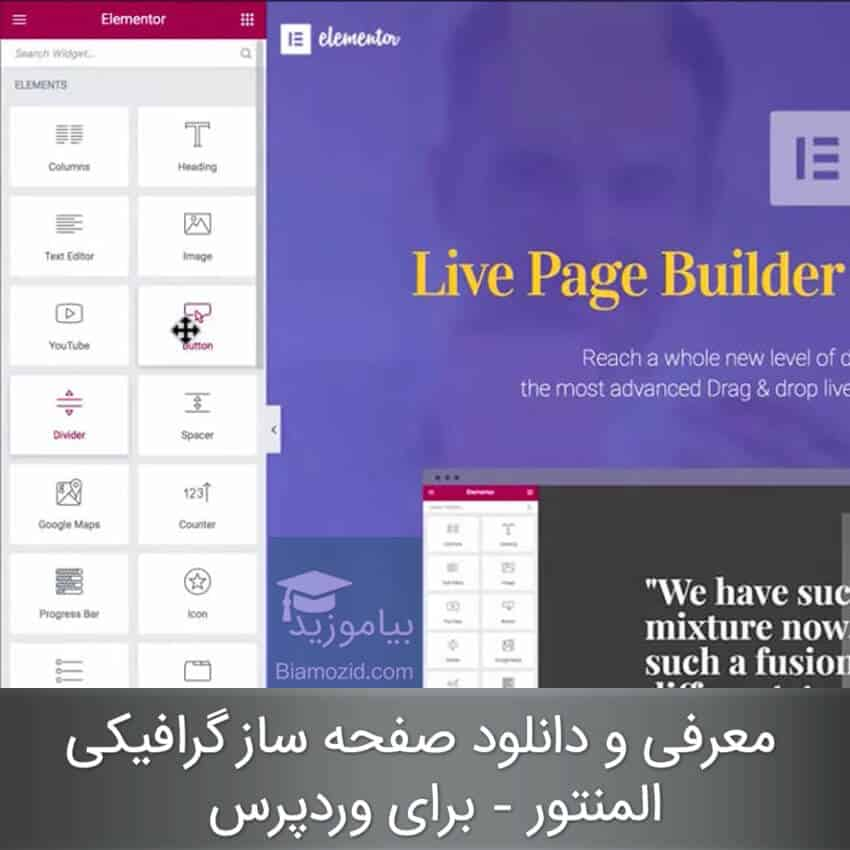 Elementor Page Builder pro