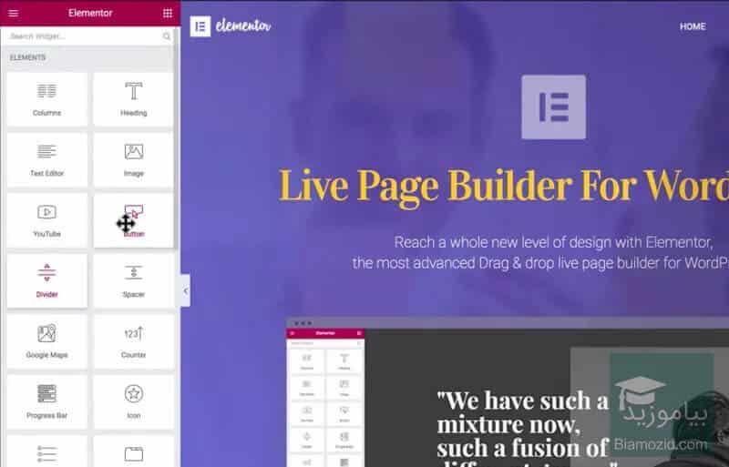 Elementor Page Builder pro