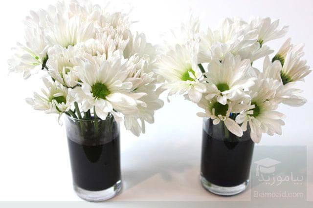 رنگی کردن گل - گذاشتن در جوهر