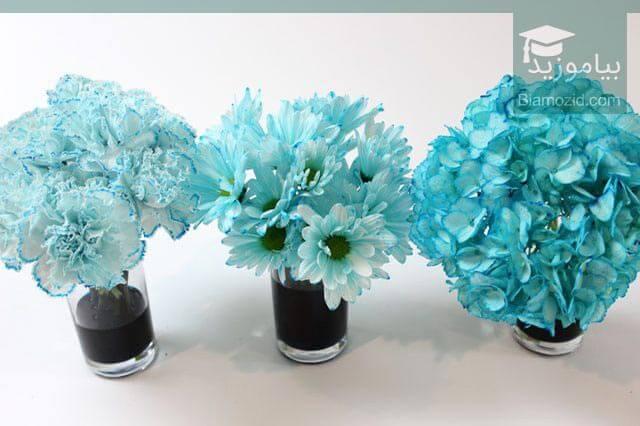 رنگی کردن گل - 24 ساعت زمان بدهید